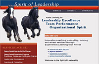 Spirit of Leadership Jackie Lowe Stevenson