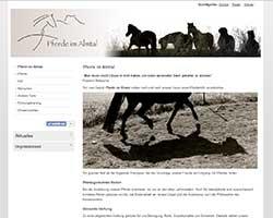 Susanne Ruff Pferde im Almtal